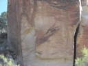Pictures of the Cave Paintings-you have to look close to see some of them